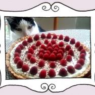 Tarta z musem czekoladowym, kremem Mascarpone i malinami